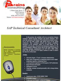 SAP Technical Consultant/ Architect