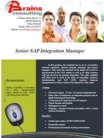 Senior SAP Integration Manager