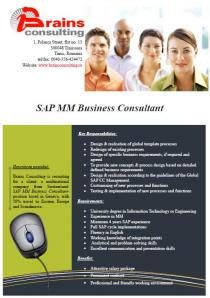 SAP MM Business Consultant