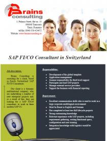 SAP FI/CO Consultant in Switzerland